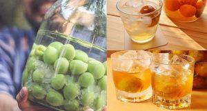 Hướng dẫn cách ngâm rượu mơ tươi thơm ngon – dễ uống