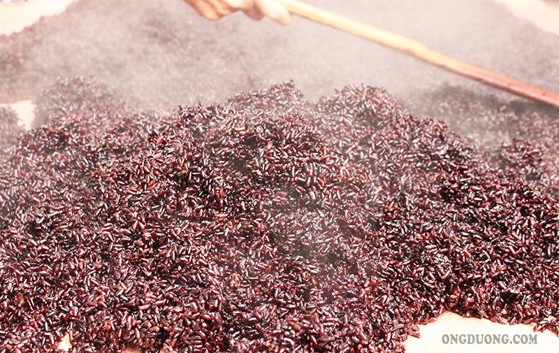 Gạo nếp cẩmcó màu nâu đỏ rất tốt cho tim mạch và hệ tiêu hóa